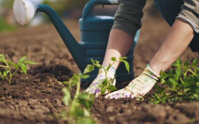 Orti Blu sul sito del partenariato europeo per l'innovazione Eip-Agri